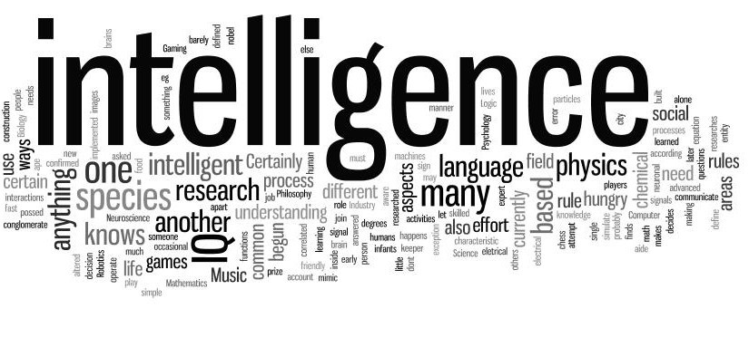Understanding Intelligence In An Individual